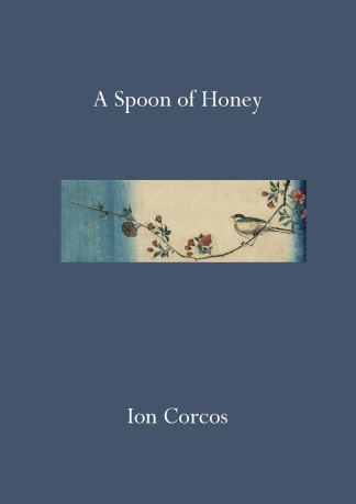 A Spoon of Honey - Front Cover